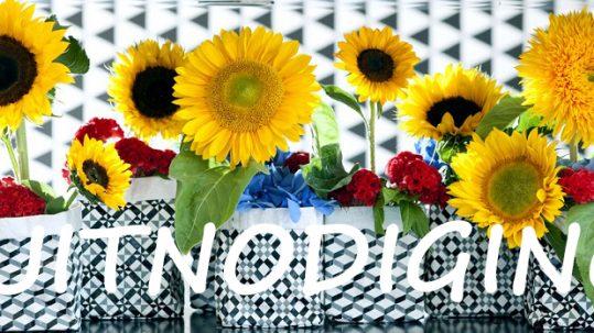 dvdm-bloemen